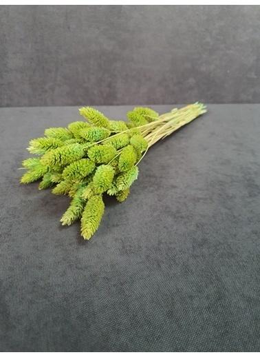 Kuru Çiçek Deposu Kuru Çiçek Kuş Otu 35-40 Cm  Koyu Mor  Yeşil